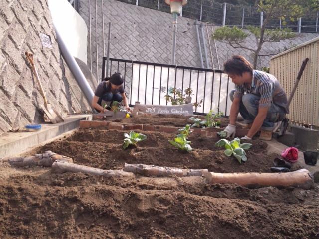 Joy Herb Garden その7