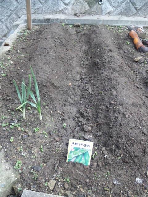 Joy Herb Garden その14