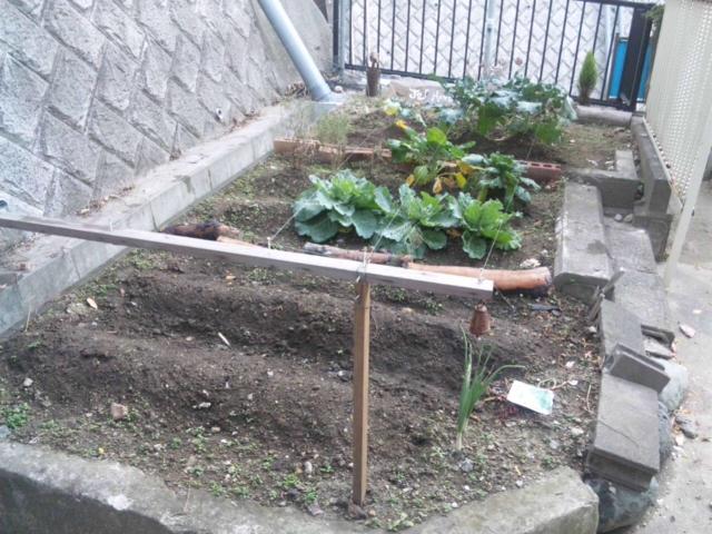 Joy Herb Garden その16